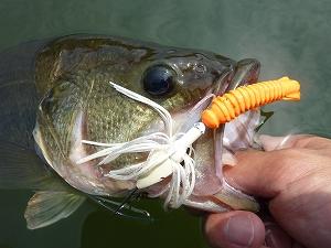トレーラー次第で釣果にも影響が出ることがあるので軽視出来ません。