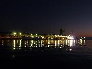 マグロ水揚げ基地として有名な宮城県塩釜港。夜明け前の早朝から、マグロのセリが行われていた。