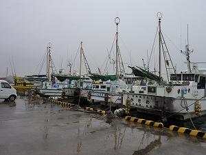 塩釜港に隣接する、まがき漁港にズラリと並ぶ「えびす屋」の船達。一緒にがんばろう、塩釜!!