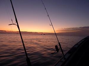 塩釜港を出港し、日本三景の一つに数えられる松島湾を疾走する。さぁ、今日も海の1日の始まりだ!