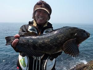 北海道の日本海側・積丹半島で出会えたアイナメ50UP。