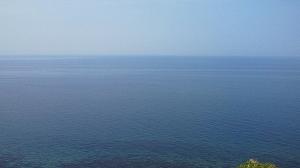 眼中に広がる蒼い海に春の風が実に心地良い。