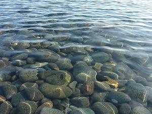 まるで飲料水を思わせる水の透明度。こんなクリアな海に銀影を追った。