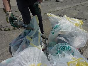 ゴミは種類ごとに分別して、しかるべき日に出すのがルール。