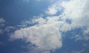 こんな夏の青い空が見られる季節も残り少なくなってきましたね。