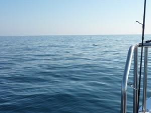 見渡す限り、海!海!海!