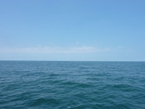 日本海。北陸は新潟の海も灼熱でした。