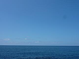 夏の海とキジハタと。